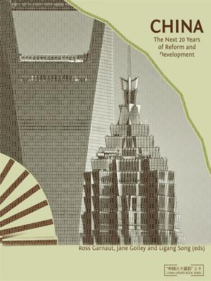 china-the-next-twenty-reforms-Economía china