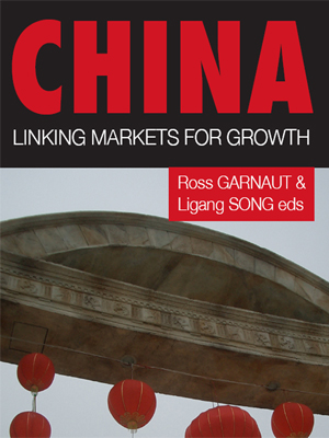 linking-markets-for-growth-Economía china