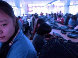 China Blue 2005