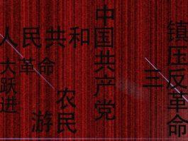 Glosario de términos en la China contemporánea