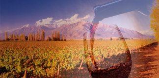 Vino en China: De Chile a China, un brindis para China