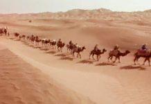 La Ruta de la Seda: Travesía por el desierto de Taklamakán (6)