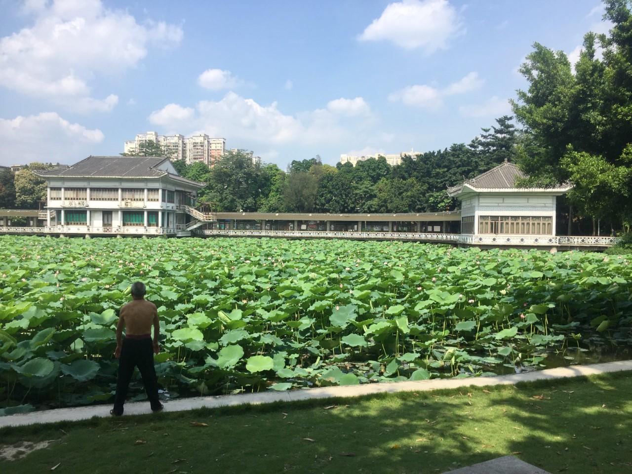 Guangzhou: Guía Alternativa para viajeros Parque de Liwan